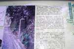 CIMG6609.JPG